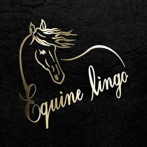 Equine lingo logo